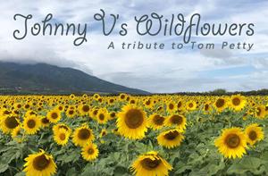 jv-wildflowers3